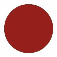 Dakcoating na ontmossingswerken - red