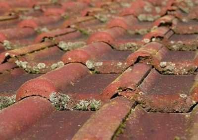 Dakontmossing - mos op dak