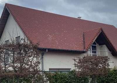Ontmossen dak West-Vlaanderen - na