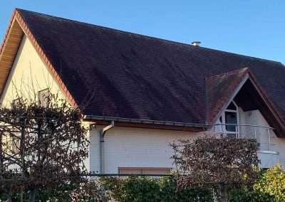 Ontmossen dak West-Vlaanderen - voor